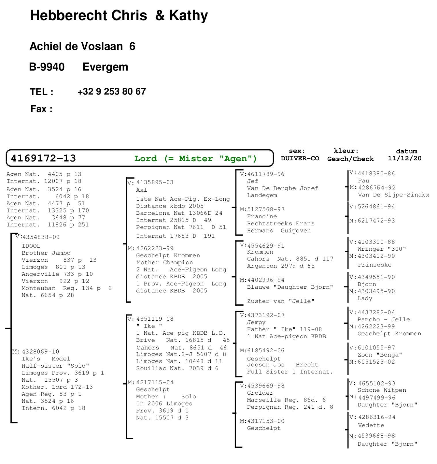 Pedigree van BE13-4169172